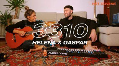 GASPAR - 3310